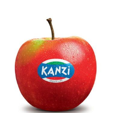 6_kanzi